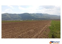 >>Vand teren intravilan-Calimanesti,Jiblea Veche<