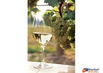 vand ieftin vin natural